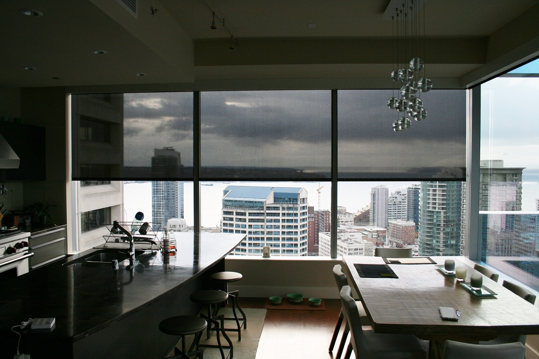 A great example of why a dark fabric offers superior performance when you have a view to enjoy. With a dark fabric you can see through it which substantially reducing heat and glare. Lutron QED motorized roller shades.