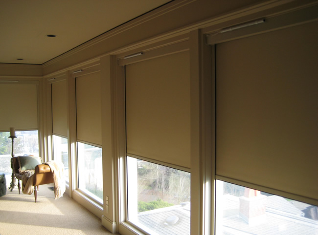 Dvd custom installations projects page 2 insolroll Motorized blackout shades with side channels
