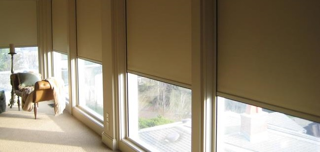 Lutron Motorized Roller Shades